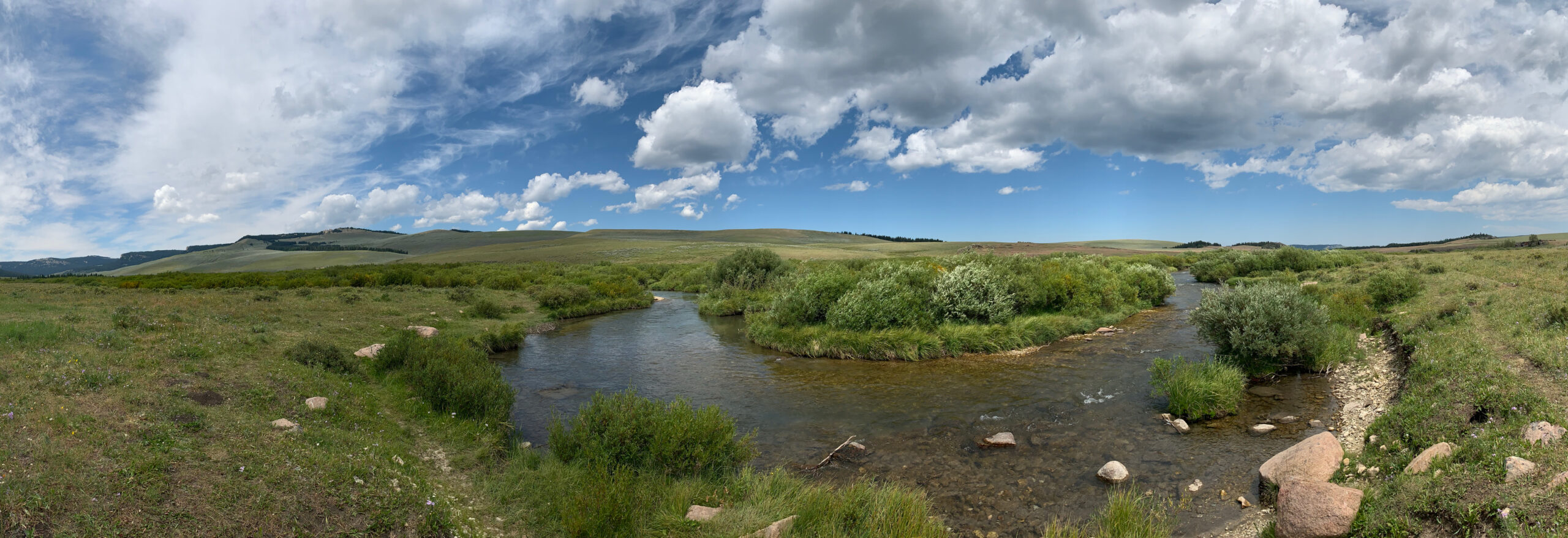 The North Fork of the Tongue River near Burgess Junction